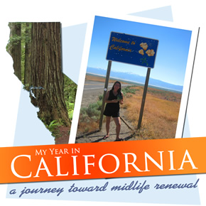 Cover of A Year in California by Ingrid Hart